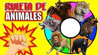 RULETA SORPRESA de ANIMALES SALVAJES Depredadores de la Noche Leon, Tigre, Oso, Lobo, Hi ...