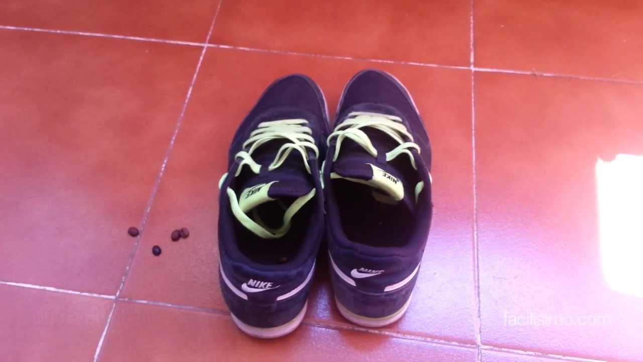 El Olor De Eliminar Cómo Las Deporte Zapatillas DH2E9YWI
