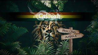 Caloosh - Rolling Jungle ( Jungle Roller Dubwise Raggajungle dnb DJ mix 2020 )