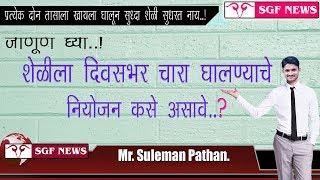 शेळीला दिवसभर चारा घालण्याचे नियोजन कसे असावे ते पहा. / Sheli Palan Mahiti
