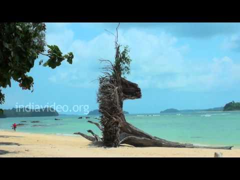 Mahatma Gandhi Marine National Park at Wandoor, Andaman and Nicobar Islands