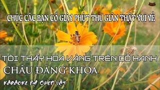 Tôi thấy hoa vàng trên cỏ xanh Karaoke