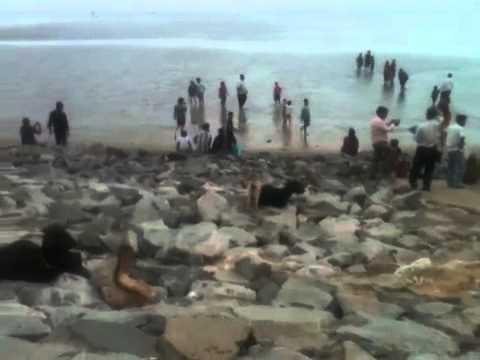 Balasore chandipur beach.