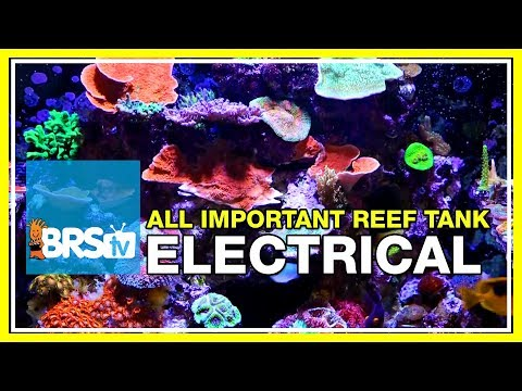 Week 6: Wiring Your Reef Tank, Everything You Forgot To Think About   52 Weeks Of Reefing #BRS160