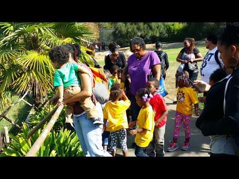 Ile Omode Oakland Zoo Field Trip 10-23-15