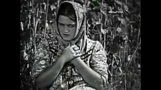 """ТИХИЙ ДОН"" — Экранизация романа М. А. Шолохова. 1930 г."