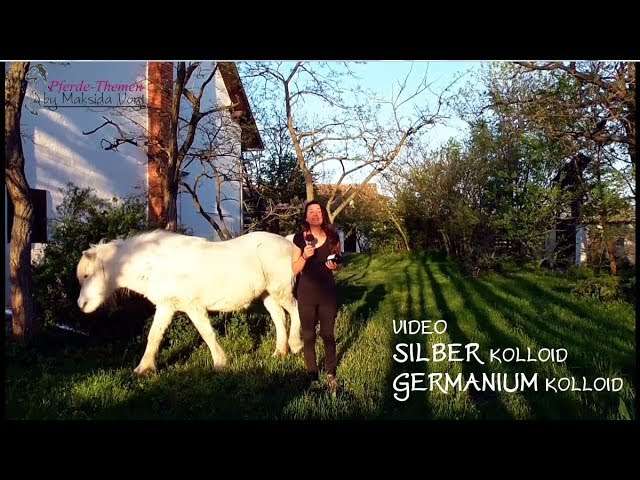 Silber Kolloid, Germanium Kolloid - wann gebe ich sie den Pferden?