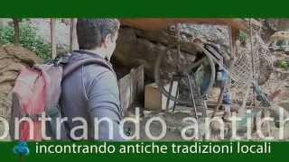 Alla scoperta del Parco di Portofino