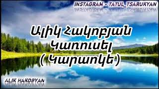 Alik Hakobyan - karusel karaoke