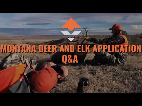 Montana Deer And Elk Application Strategy — Q&A