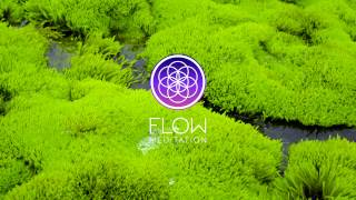 Minute Meditation Reminders - Focus