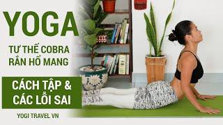 Cần tránh LỖI SAI KHI TẬP YOGA - Động tác yoga COBRA - rắn hổ mang