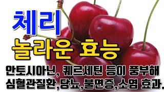 [#체리효과] 체리의 놀라운 효능 10가지 (안토시아닌…