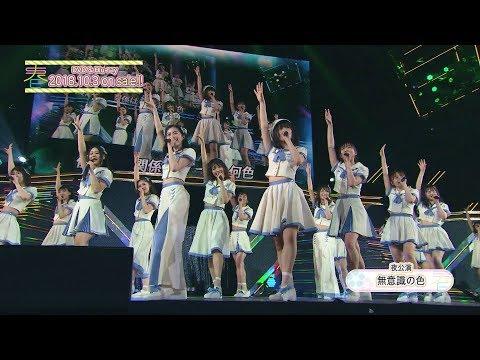 SKE48単独コンサート〜サカエファン入学式〜 / 10周年突入 春のファン祭り!〜友達100人できるかな?〜DVD&Blu-ray ダイジェスト公開!!