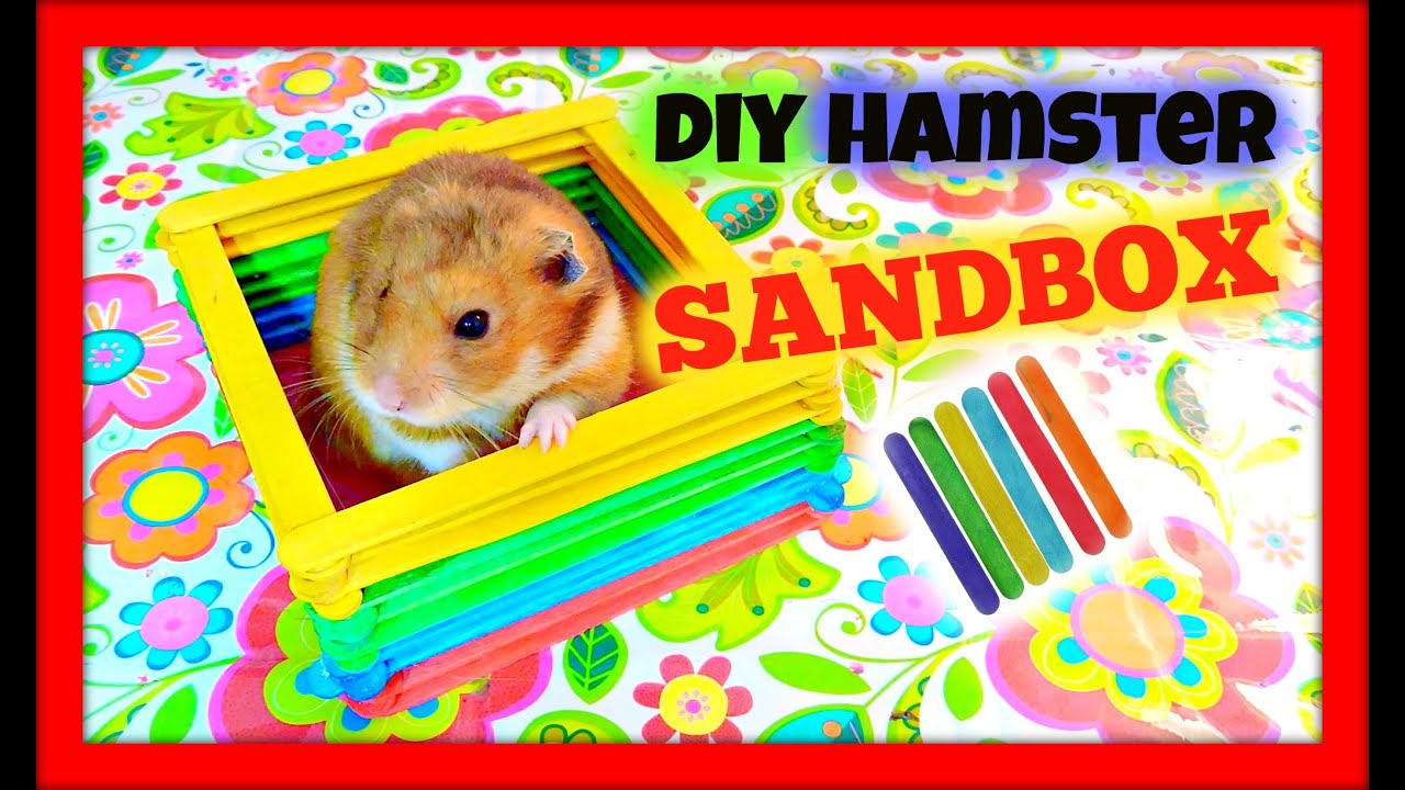 DIY Hamster Toy Popsicle Sticks YouTube