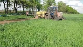 Обработка пшеницы комплексом удобрений РЕАКОМ и ЯРИЛО