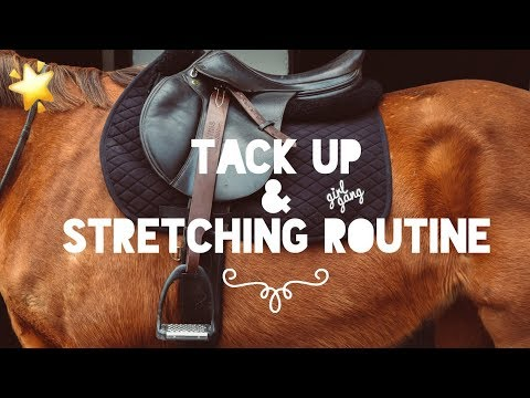 TACK UP AND HORSE STRETCHING ROUTINE // with my super cool new leathers!