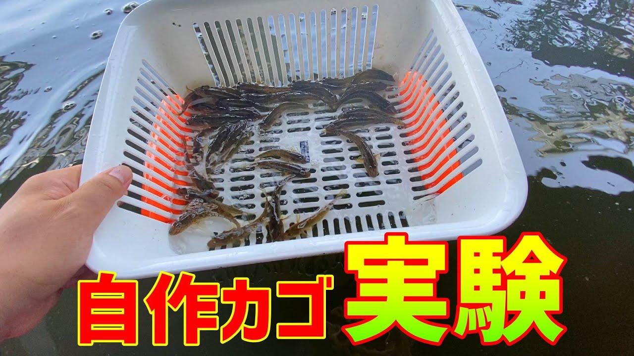 【ハゼ釣り】100円ショップにある物で便利な活かしカゴ制作実験