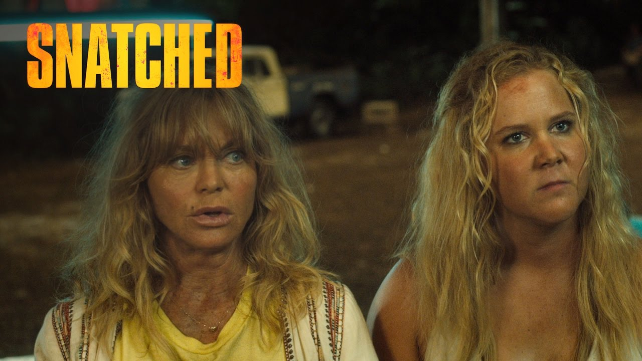 Image result for snatched 2017