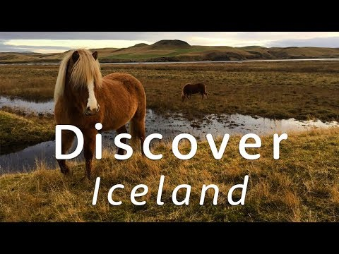 ✨🇮🇸 Discover… Iceland 🇮🇸✨ | Travel Better with Holiday Extras!