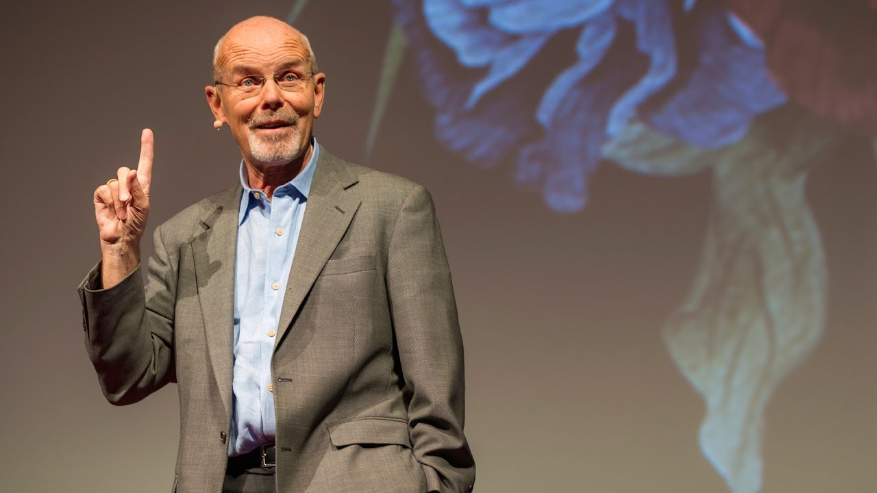 Download How Do You Know If You're Truly Free? | Philip Pettit | TEDxNewYork
