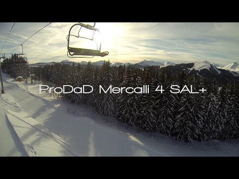 Video Stabilization : ProDAD Mercalli 4 SAL+