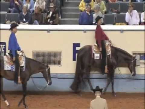 Extremely Hot Chips - AQHA World Show