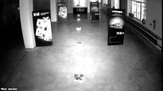 Тестовая видеозапись с IP камеры XVI серии 42хх 4Mp ночь