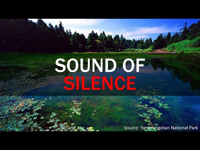 Sound of Silence | Taiwan Insider | June 11, 2020 | RTI