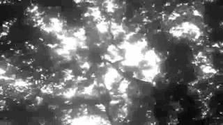 Maniacal Incubus - En As I Dype Skogen(Darkthrone)