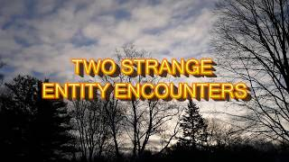 """""""Two Strange Entity Encounters"""" 
