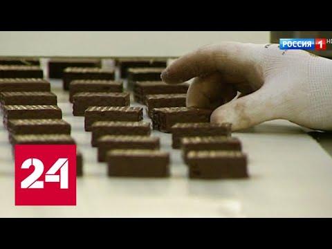"""""""Рот-Фронт"""" запустил крупнейшее в Восточной Европе производство сырья из какао-бобов - Россия 24"""