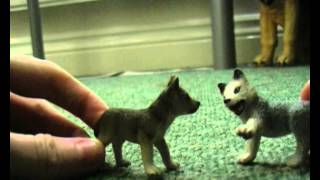 Brothers of the Wild - Episode 1 (Schleich Wolf Pack)