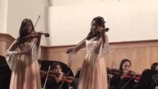 Bird's Poem by 2 Violins