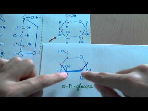 Proyección de Haworth y ciclación de monosacáridos