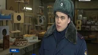 В Омске заключенные начали строить дома для кошек