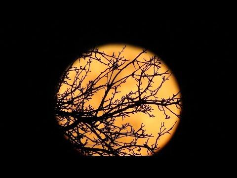 Full Moon Rising - 8-8:30pm, Sunday March 12th, 2017 - NE Ohio