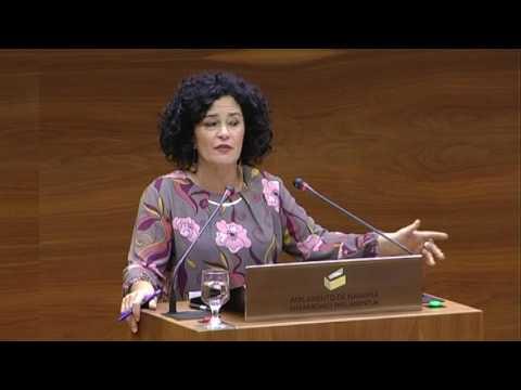 Intervenciones PSN-PSOE sobre Paga extra funcionarios y Ley LGTBI