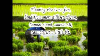 Planting rice is never fun 1