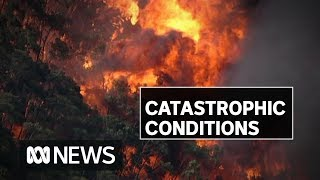 NSW faces second catastrophic fire danger warning | ABC News