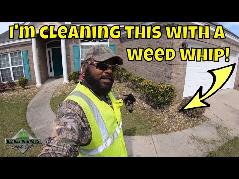 How I clean a weed infested rock plant bed with a weed whip