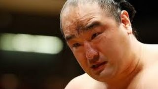 皆さん、初めまして。 私は、昭和の大横綱千代の富士が大好きです。 若...