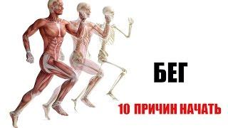 видео Какие мышцы качаются при беге