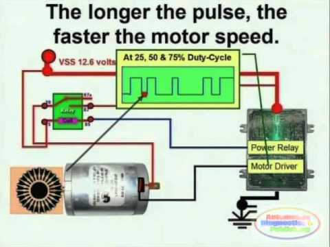 Electric Motor & Wiring Diagram on