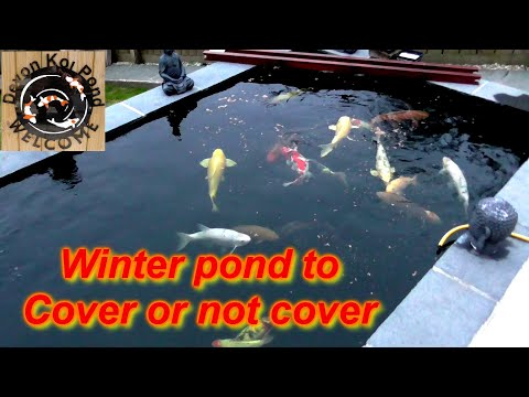 Diy Koi Pond Cover Keeping The Water As Warm As You Can Without Heating