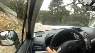New subaru forester diesel test drive