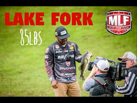 I Caught 85lbs in One SPOT/Bass Pro Tour|Lake Fork VLOG