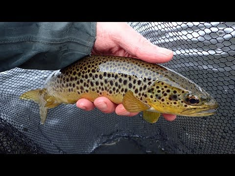 Ullswater - Flyfishing In The English Lakes District