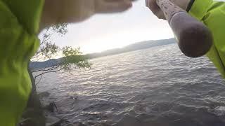 【琵琶湖バス釣り】ビックベイトで釣れた
