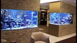 Как заработать деньги на обслуживании и чистке аквариумов / Бизнес идея
